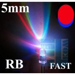 DIODA LED 5mm MIGAJĄCA R-B CZERWONO-NIEBIESKA FAST DWUKOLOROWA CLEAR 2N /AK