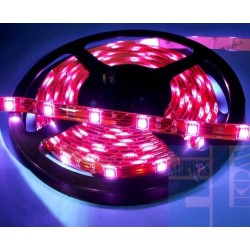 TAŚMA ELASTYCZNA LED RGB 12V - 15 LED 50cm - SILIKON
